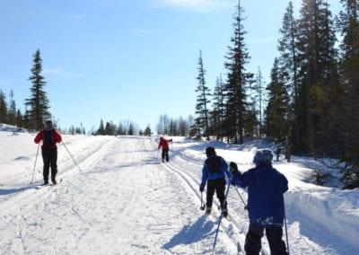 skispor2