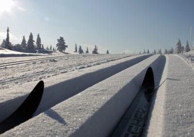 skispor1